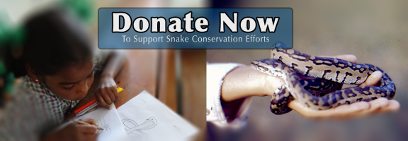 Snake Conservation, Save The Snakes