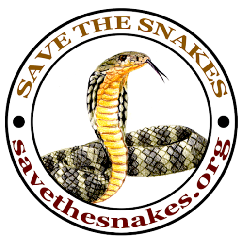 save the snakes, king cobra conservation